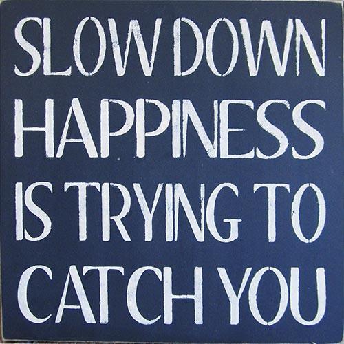 slowdown_500_29153302-3821-4b0b-ad37-c2a540a8685f_900x